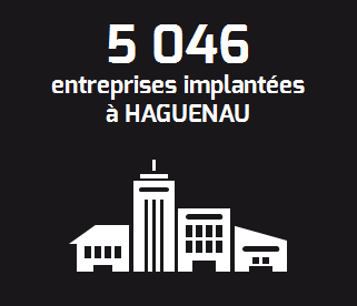 infographie-hageunau